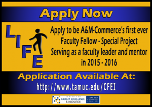 Faculty Fellow - Special Project Application Now Available