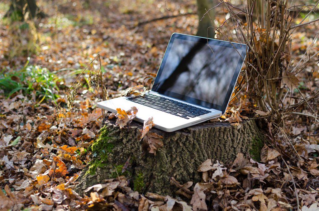Laptop on tree stump