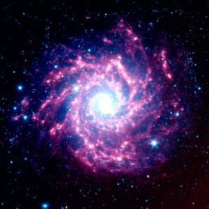Supernova Dust Factory in M74